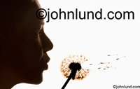 Stock photo of woman's face as she blows seeds off of a Dandelion and makes a wish. Picture of woman blowing dandelion seeds into the air. Dandelion seed pics.