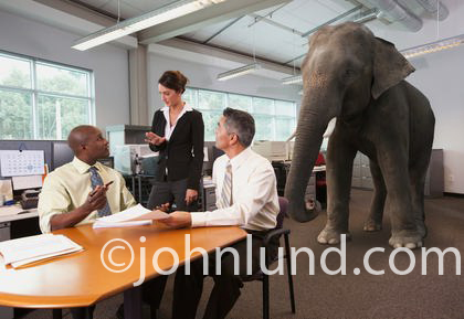 Elephant in the room being ignored during a business meeting. A group of three people are sitting and standing around the board room conference table and they are ignoring the elephant in the room.