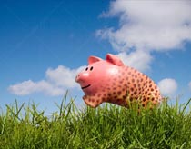 A leaping piggy bank stock photo features leopard or cheetah spots in testimony to fast returns on investment.