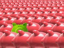 A green piggy bank pops it's head up above a sea of pink piggy banks in a stock photo about green investments standing out from the crowd.