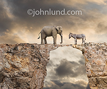 A funny political impasse, a donkey and an elephant stand opposite of each other on a narrow rock bridge between two cliffs...democrats facing off republicans in perhaps a not so funny look at the lack of cooperation in American politics.