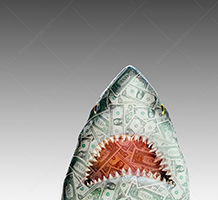 Alt Text: A money shark rises up against a gray background in a stock photo about investment dangers, loan sharking, and financial risks.