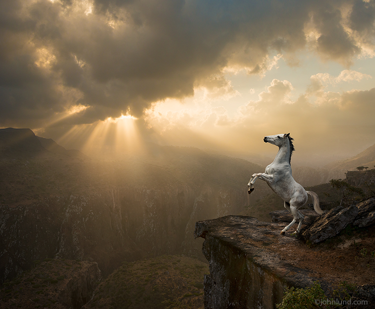 A white horse rears up on a cliff at the edge of a precipice, a canyon that stretches deep and wide. Above the distant canyon walls the sun struggles to break out of the clouds in a brilliant sunrise.