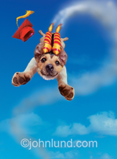 A Jack Russell Terrier shoots to success with rockets on his back and a graduation cap flying off in a funny stock photo about graduation messages and even dog training possibilities.
