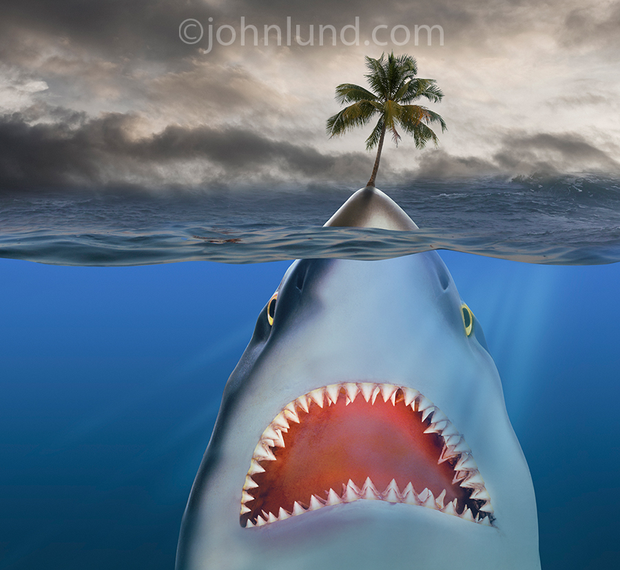 A gigantic shark clever disguises himself as an island, complete with palm tree, as he patiently awaits his next meal in an image about unseen dangers.