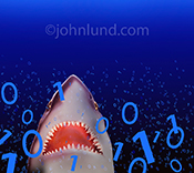 Shark pictures like this one are a metaphor for hackers, computer hacking, and online, networking, and Internet threats.