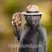 Smokey the Smokey The Birthday Anthropomorphic Bear bear holds a shovel covered in the remains of a birthday cake, complete with smoldering candles, in a parody stock photo of why you don't invite Smokey to your birthday party!
