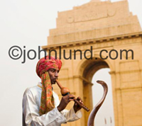 An Indian snake charmer practices his craft in front of the India Gate with a flute and a Cobra. Snake Charmers and snakes in India.