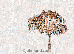 The silhouette of a tree is superimposed over a background composed of over two-hundred individual social media portraits in a stock photo about the growth and