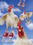 Funny animal photo of chickens wearing sneakers with springs attached to the soles of their shoes. These are Spring Chickens! White chickens wearing red tennis shoes against the blue partly cloudy sky.
