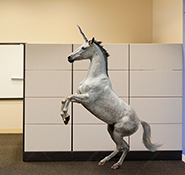 A unicorn rears up in an office in an image about the issues of