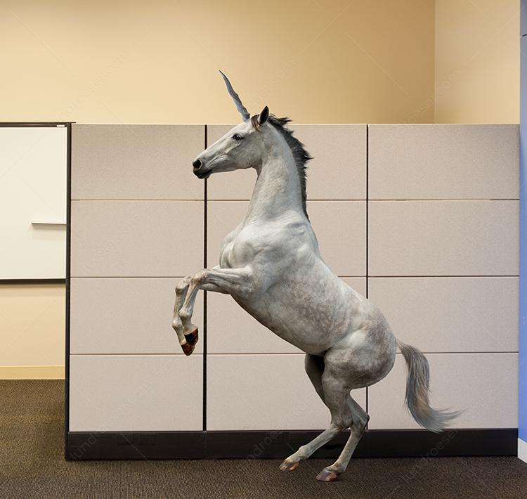 "A unicorn rears up in an office in an image about the issues of ""magical solutions"" for the challenges facing business."