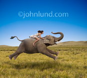 A woman rides a galloping elephant, bare-back, in this unusual picture illustrating freedom, skill and the impossible as her hair and dress flows behind her in the wind.