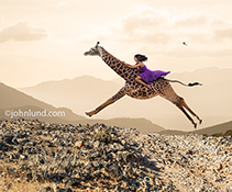 A woman rides a galloping Giraffe across a barren, rugged landscape in a stock photo about daring, courage, the unexpected, strong women, freedom and adventure.