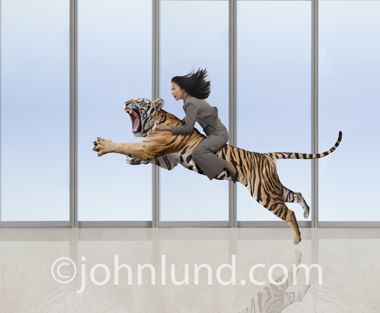 Picture of an Asian woman riding a leaping and snarling tiger in a business environment in a dramatic stock photo about the challenges of business in the Internet age.