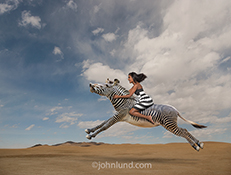 A woman, in a black and white striped dress, rides a Zebra across a barren plain in an image about strong women, freedom and the unexpected.