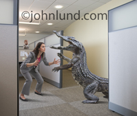 Hilarious photo of a woman about to grapple (wrestle) with an alligator in an office at work. Picture of a woman wrestling alligators.