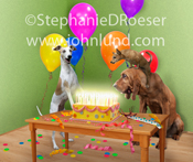 A Whippet, a Chihuahua and a Bloodhound stare in awe at a birthday cake ablaze with candles. How old are you?!!!!