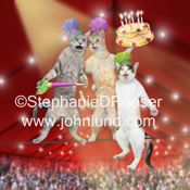 Three cats, an orange Tabby, A grey tabby and a Calico are walking a tightrope in a circus performance and birthday celebration.