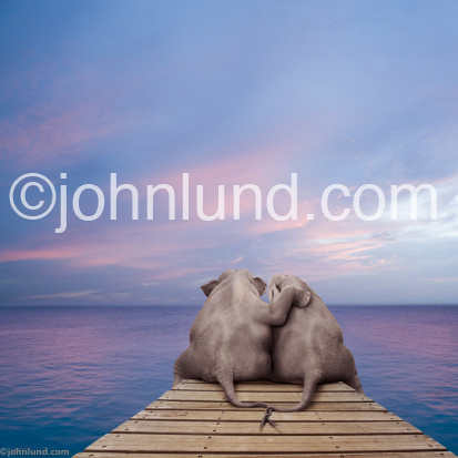 Two elephants in love sit on the end of a pier and watch a sunset together, arms around each other.  The peir is wooden and the elephants tails are entertwined.
