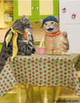 At a kitchen table, Maude the cat sits with a friend and gossips in a lol series of funny greeting card images.