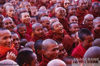 A group of Buddhist monks with their faces lighting up with smiles and laughter at a spiritual gathering.