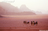 Travel and adventure photo of a travel group in Jordan crossing the Wadi Rum desert on camels.