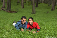 An Hispanic couple lay happily together in the wild grasses outdoors. Lush green grass with a forest of trees in the background makes a romantic location for a photo of Mexican or Latino couple.