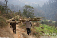 Picture of wood carriers in rural China - stock photo of adventure travel