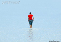 A man is wearing a red shirt and wading in shallow salt water at the Bonneville salt flats in Utah.