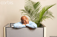 Concept stock photo of a business man trapped in a small office cubicle with his green plant.