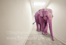 A pink elephant ambles down a long hallway in an image about fantasy, imagination, inebriation and hallucination.