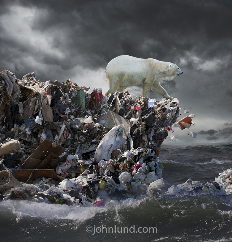 The problem of plastic pollution of our oceans is illustrated in this fine art image and stock photo of a polar bear at the edge of an ice floe of garbage in the sea.