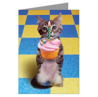 Kitty Cupcake Greeting Cards (Pk of 10)