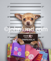 Police Mug Shot of a Funny Chihuahua holding up a sign indicating her violation was for being a shopaholic.